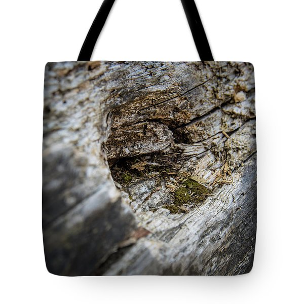 Tree Wood Tote Bag