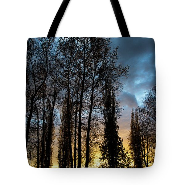 Trees In Blue Hour Tote Bag