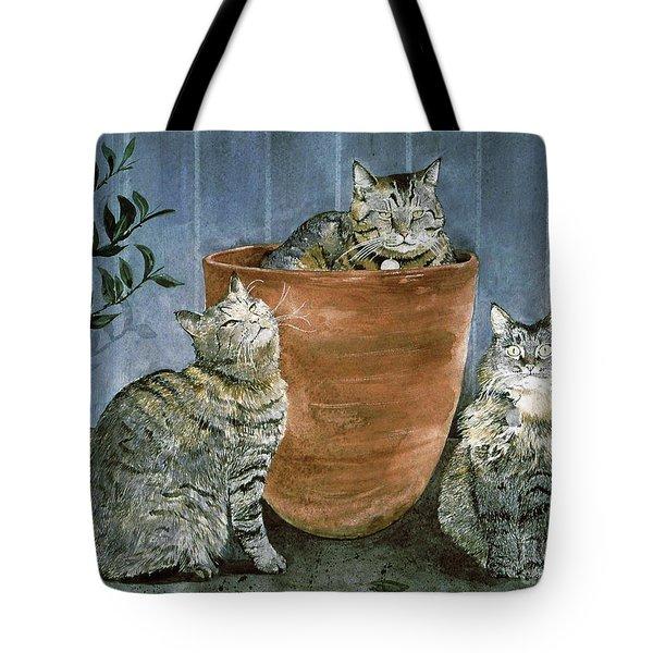 Tres Gatos Tote Bag