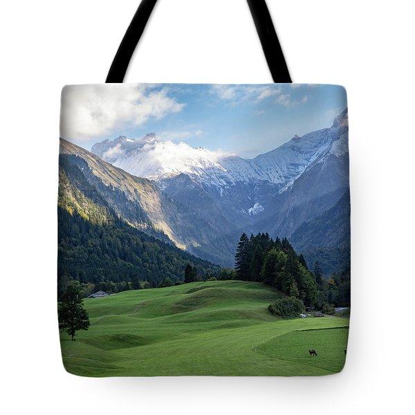 Trettachtal, Allgaeu Tote Bag