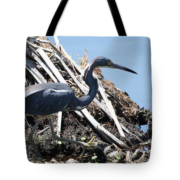 Tri-colored Heron 40312 Tote Bag