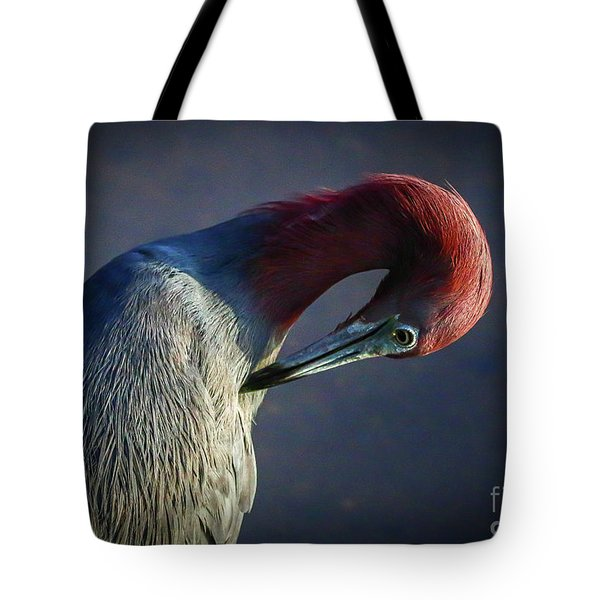 Tote Bag featuring the photograph Tricolor Preening by Tom Claud