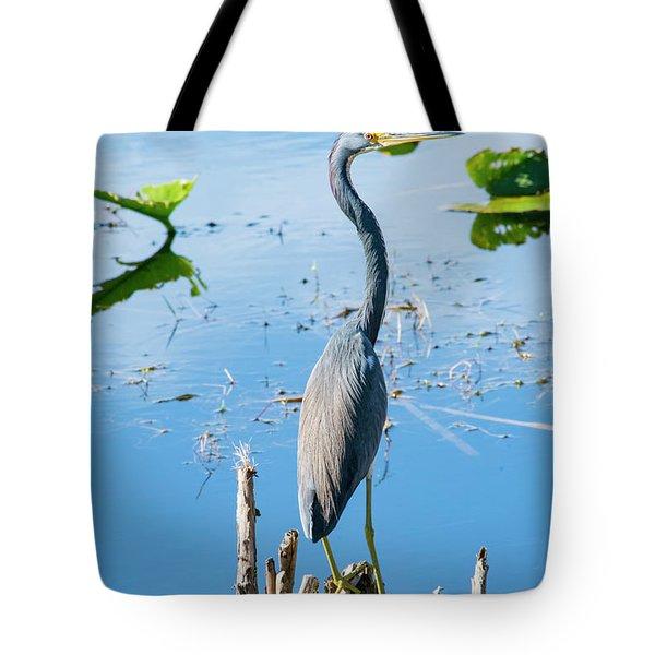 Tricolored Longneck Tote Bag