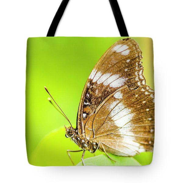 Tropical Exotics Tote Bag