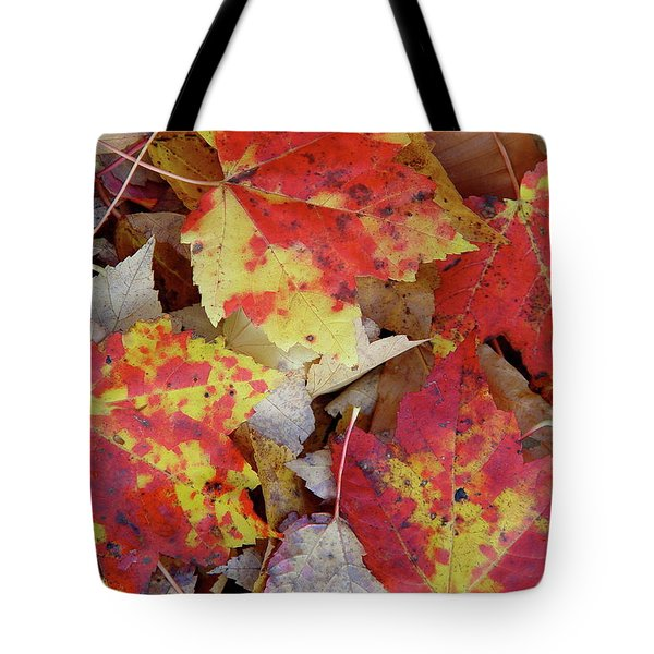 True Autumn Colors Tote Bag