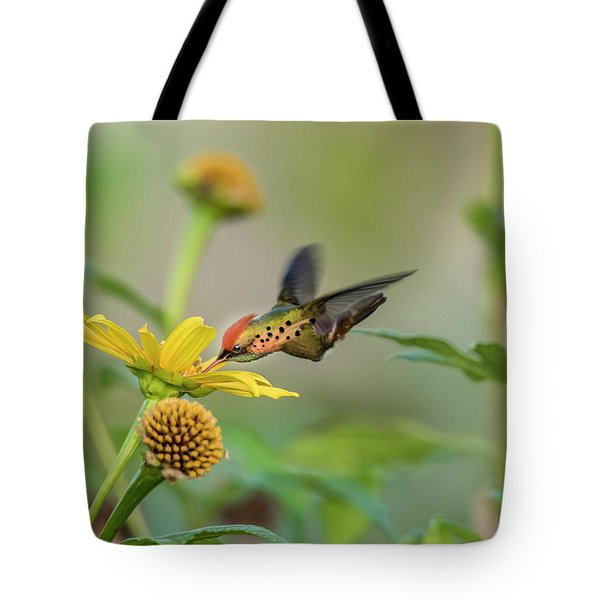 Tote Bag featuring the photograph Tufted Coquette Feeds On Sunflowers by Rachel Lee Young