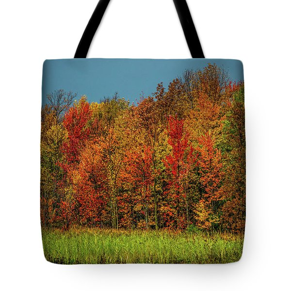 Tug Hill Colors Tote Bag