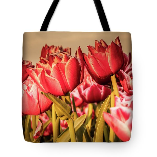 Tote Bag featuring the photograph Tulip Fields by Anjo Ten Kate