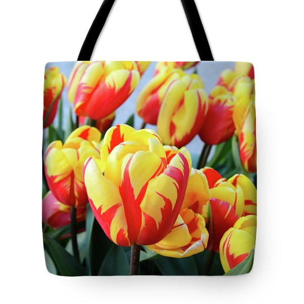 Tulips And Tiger Stripes Tote Bag