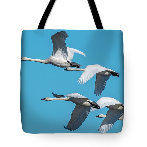 Tundra Swans In Flight Tote Bag