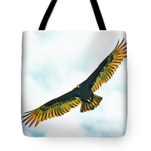 Tote Bag featuring the photograph Turkey Vulture by Michael D Miller