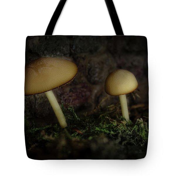 Twilight Toadstools Tote Bag