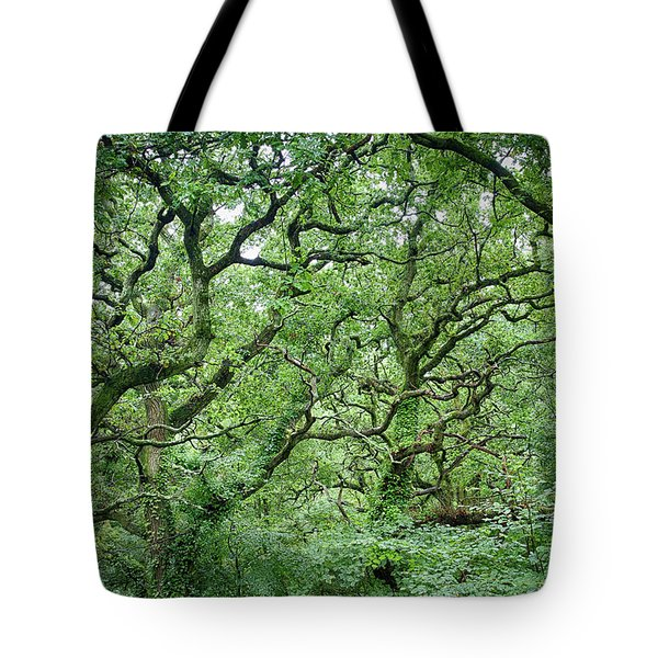 Twisted Forest Full Color Tote Bag