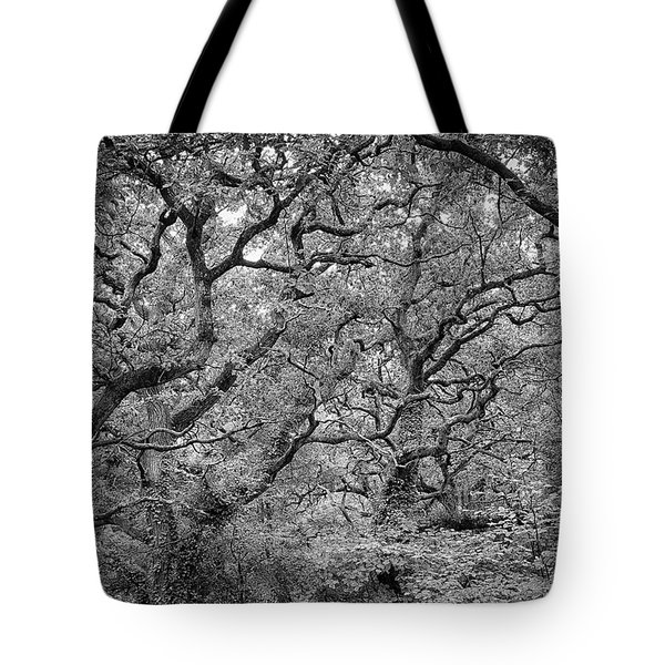 Twisted Forest Tote Bag