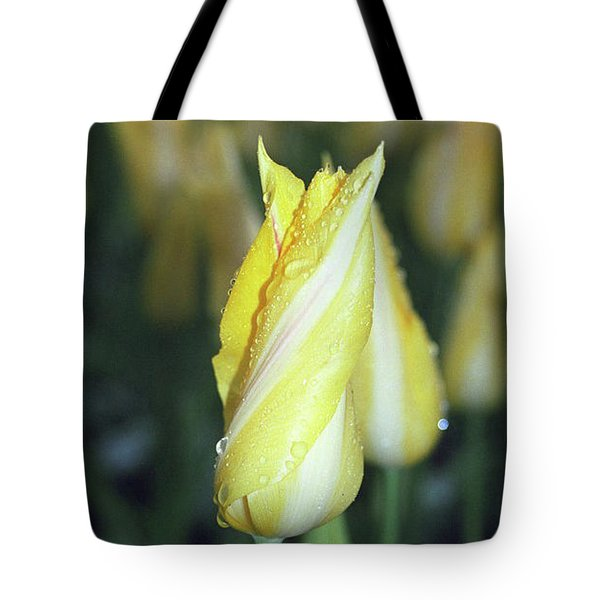 Twisted Yellow Tulip Tote Bag