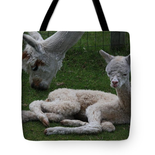 Two Hours Old Tote Bag
