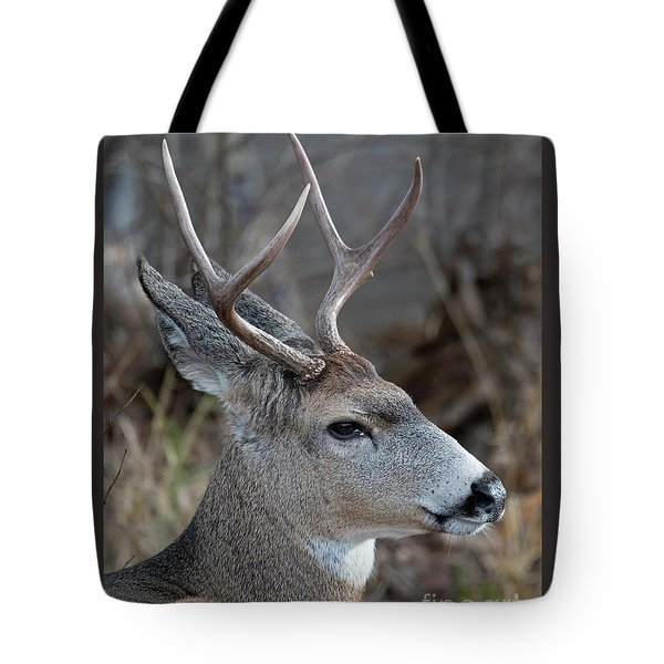 Two-point Profile Tote Bag