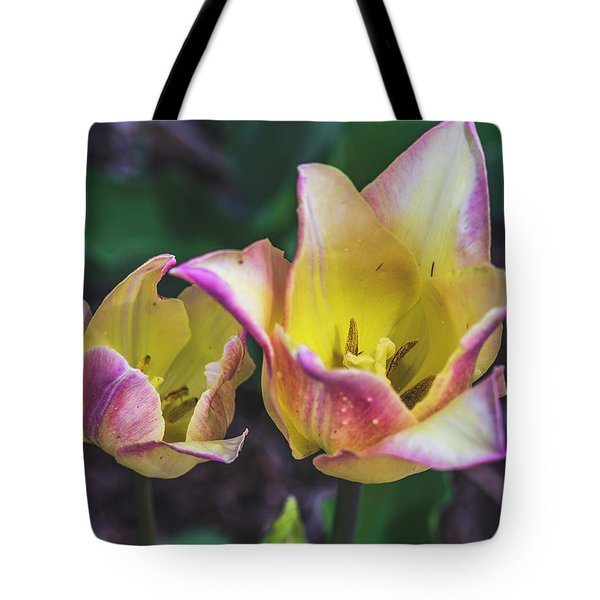 Twolips Tote Bag