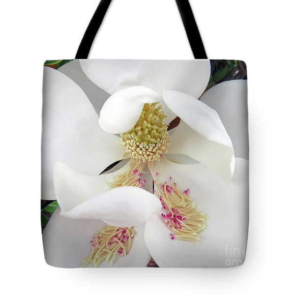 Unfolding Beauty Of Magnolia Tote Bag