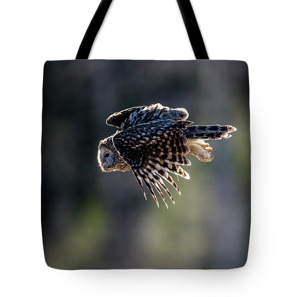 Ural Owl Flying Against The Light To Catch A Prey  Tote Bag