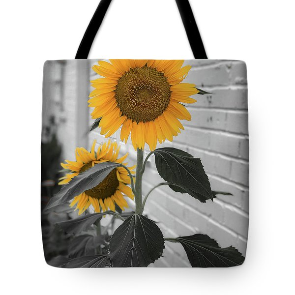 Urban Sunflower - Black And White Tote Bag