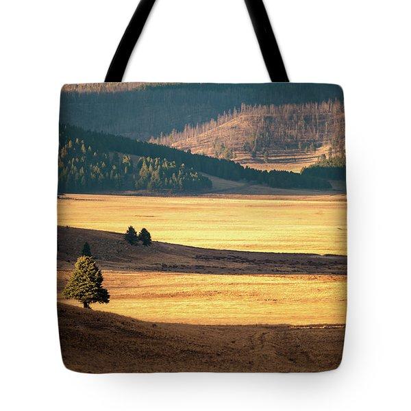 Valles Caldera Detail Tote Bag