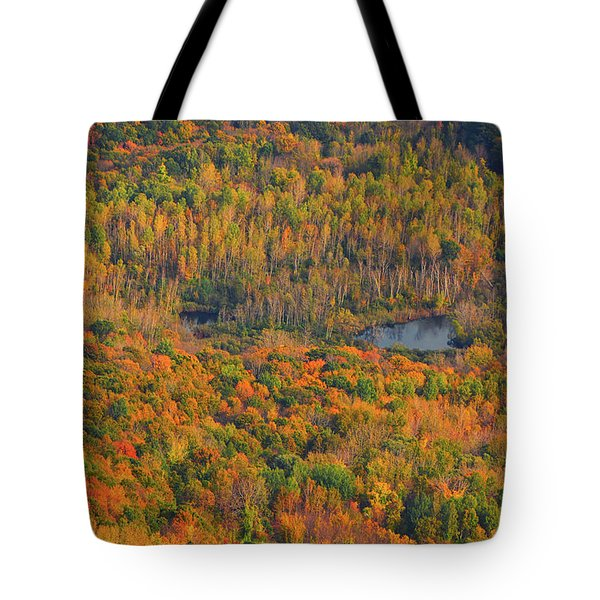 Tote Bag featuring the photograph Valley From The Summit Of Mount Greylock by Raymond Salani III