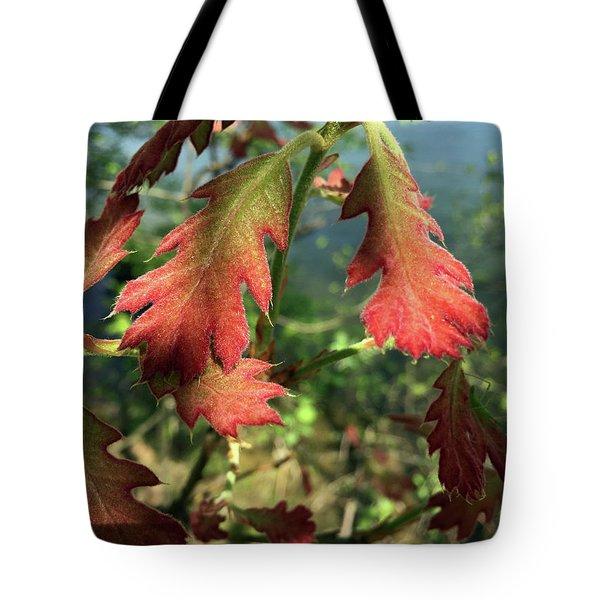 Velvet New Oak Leaves Tote Bag