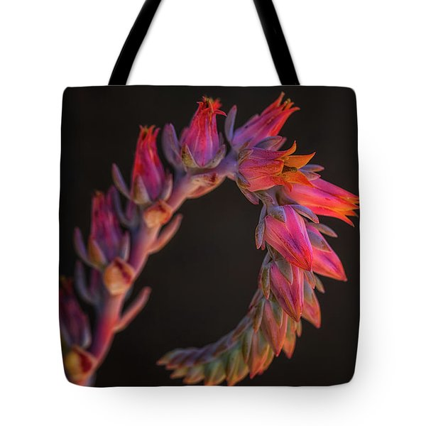 Vibrant Arc Tote Bag