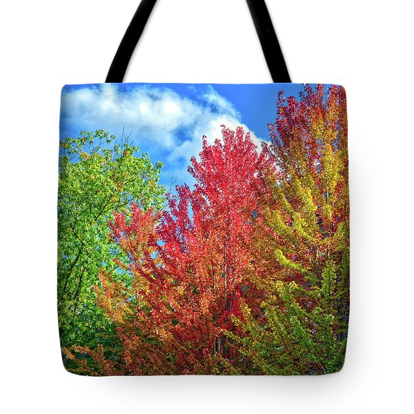 Tote Bag featuring the photograph Vibrant Autumn Hues At Cornell University - Ithaca, New York by Lynn Bauer