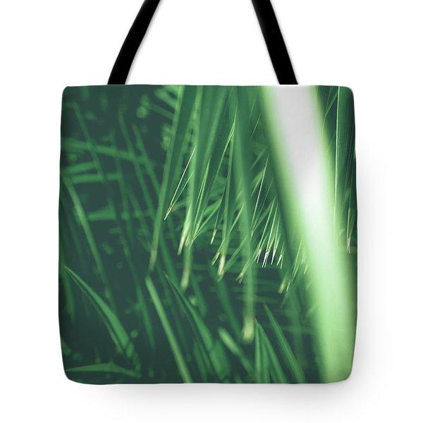 Vintage Palms Iv Tote Bag
