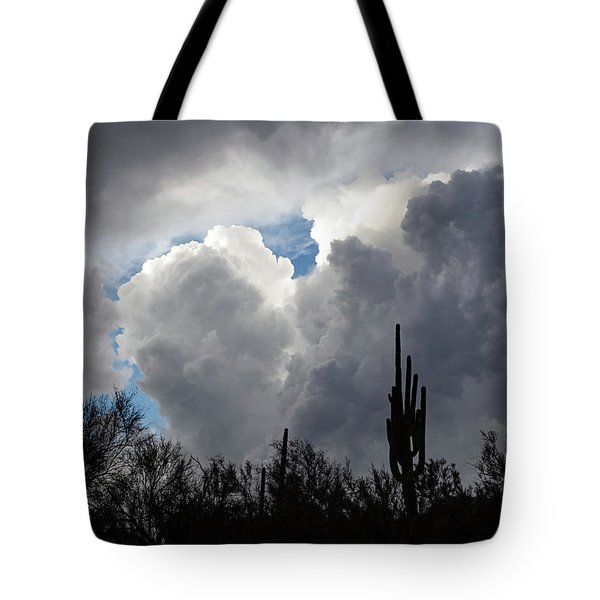 Tote Bag featuring the photograph Visions Beyond by Rick Furmanek