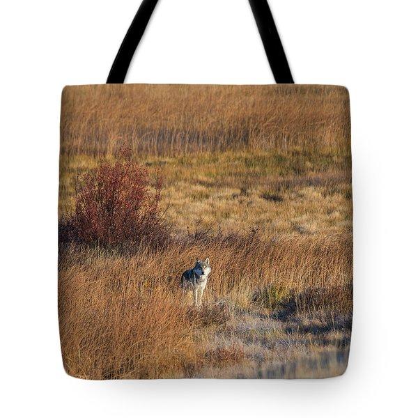W2 Tote Bag