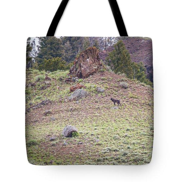 W22 Tote Bag