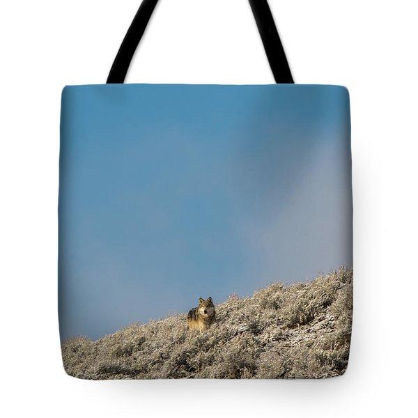 W24 Tote Bag