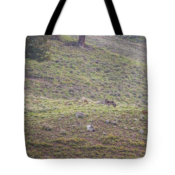 W25 Tote Bag