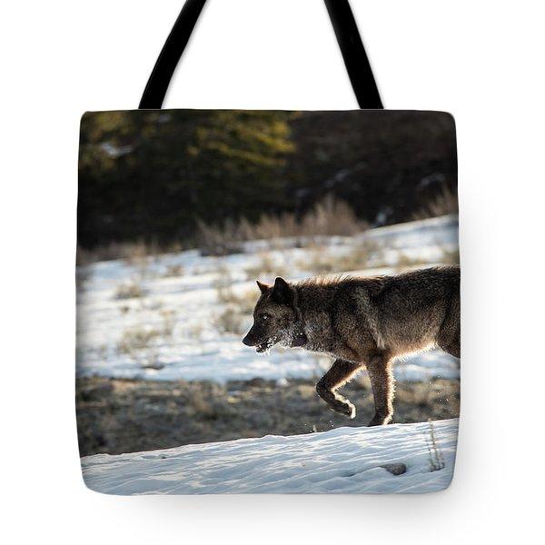 W27 Tote Bag