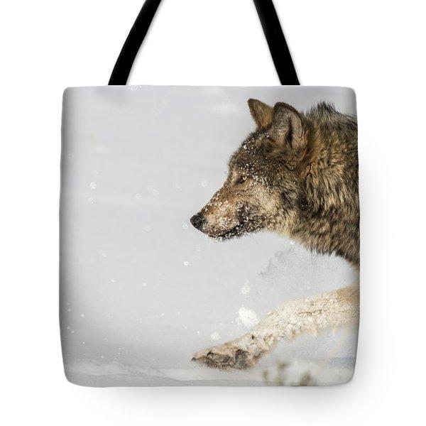 W36 Tote Bag