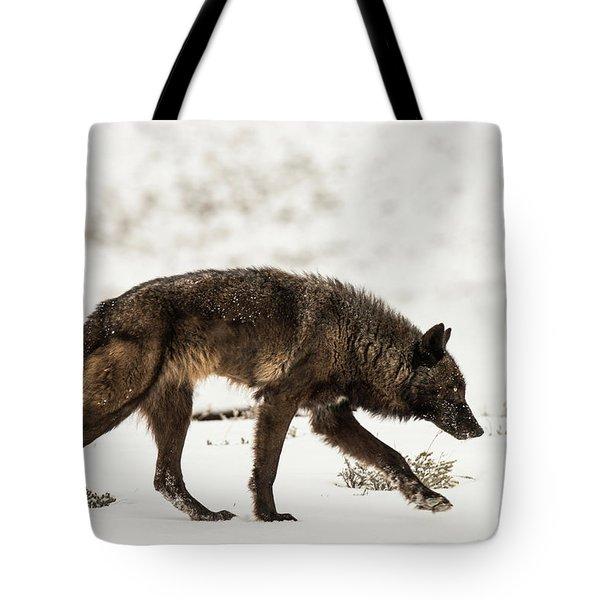 W44 Tote Bag
