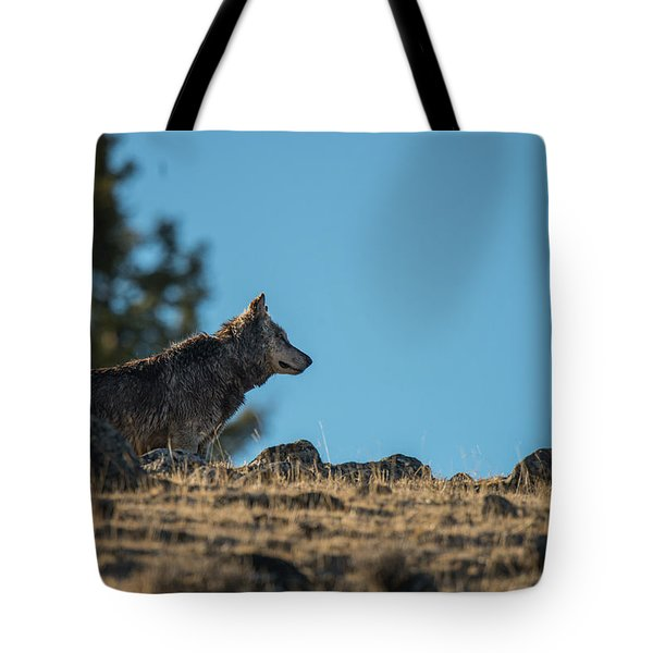 Tote Bag featuring the photograph W61 by Joshua Able's Wildlife