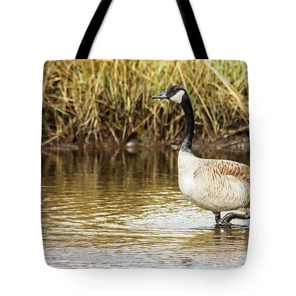 Wading Canada Goose Tote Bag