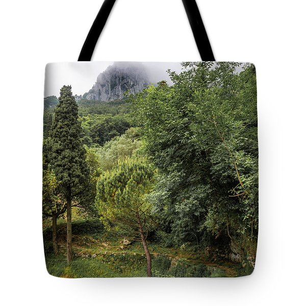 Walking Along The Mountain Path Tote Bag