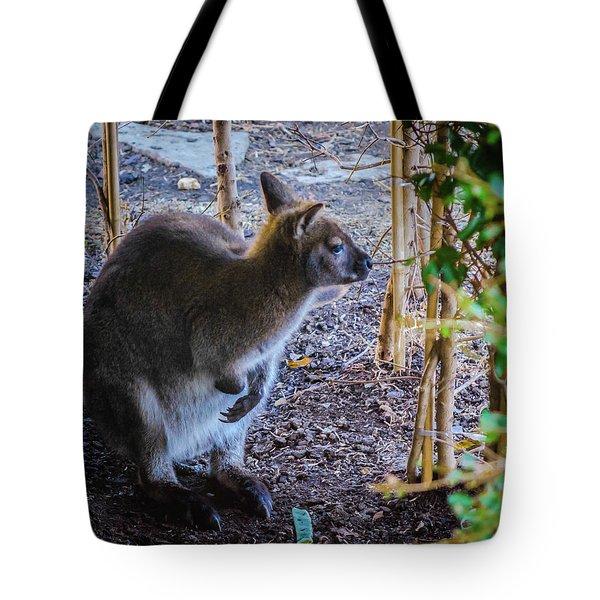 Wallaby Tote Bag