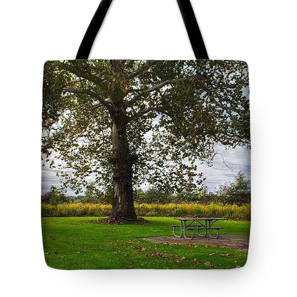Walnut Woods Tree - 1 Tote Bag