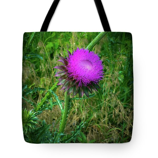 Wanna Be In Scotland Tote Bag