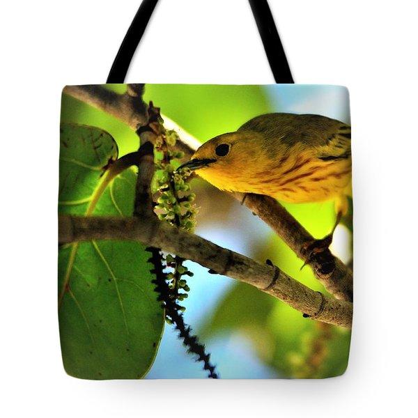 Warbler's Delight Tote Bag