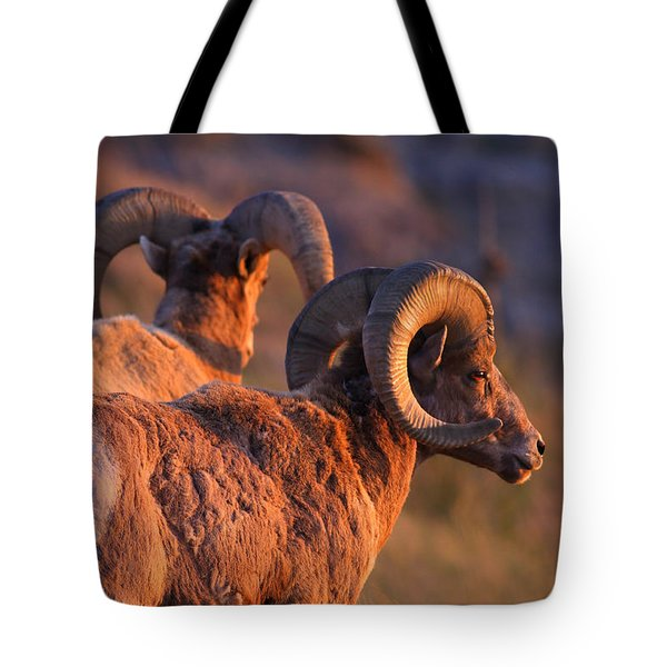 Warm Touch Tote Bag