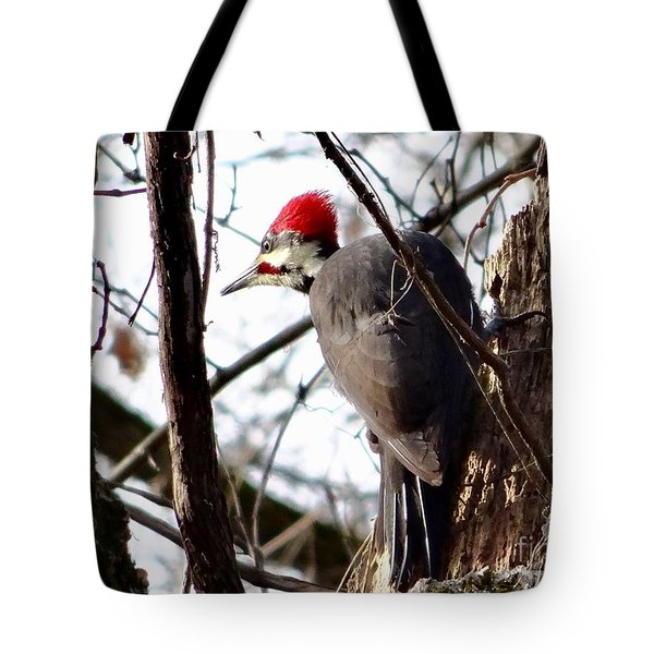 Warypileated Tote Bag