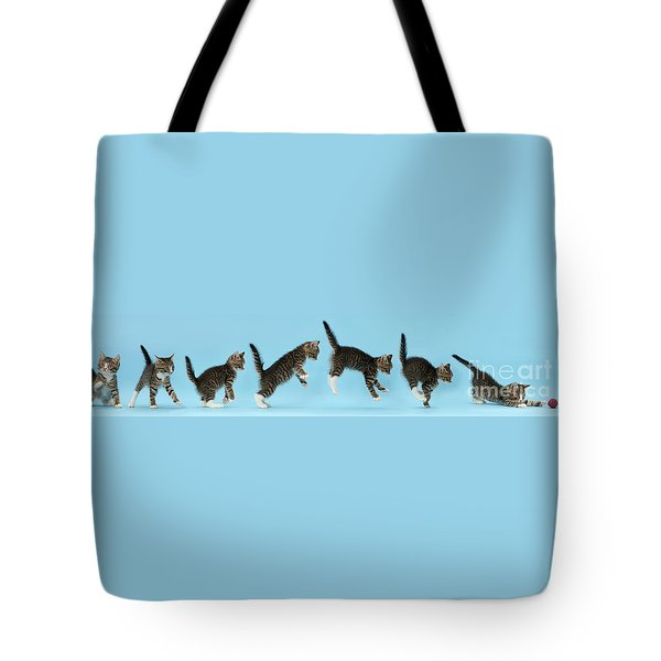 Tote Bag featuring the photograph Watch. This Is How I Attack. by Warren Photographic