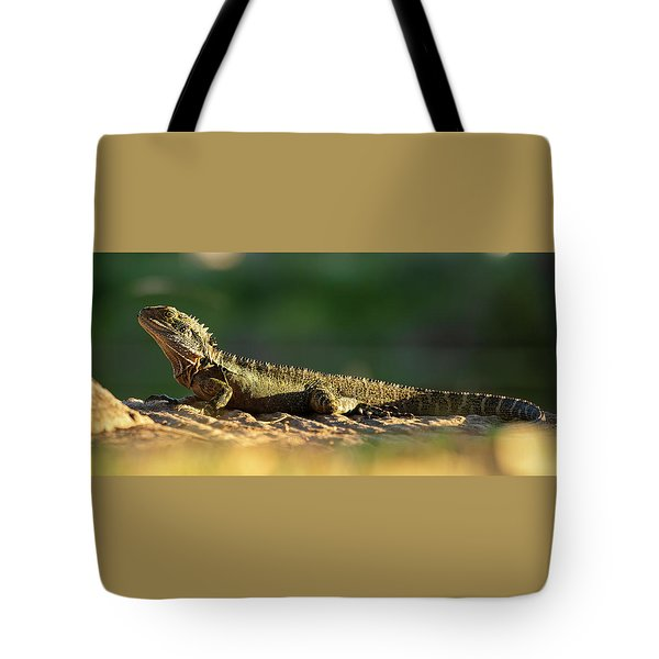 Tote Bag featuring the photograph Water Dragon Lizard Outdoors by Rob D Imagery